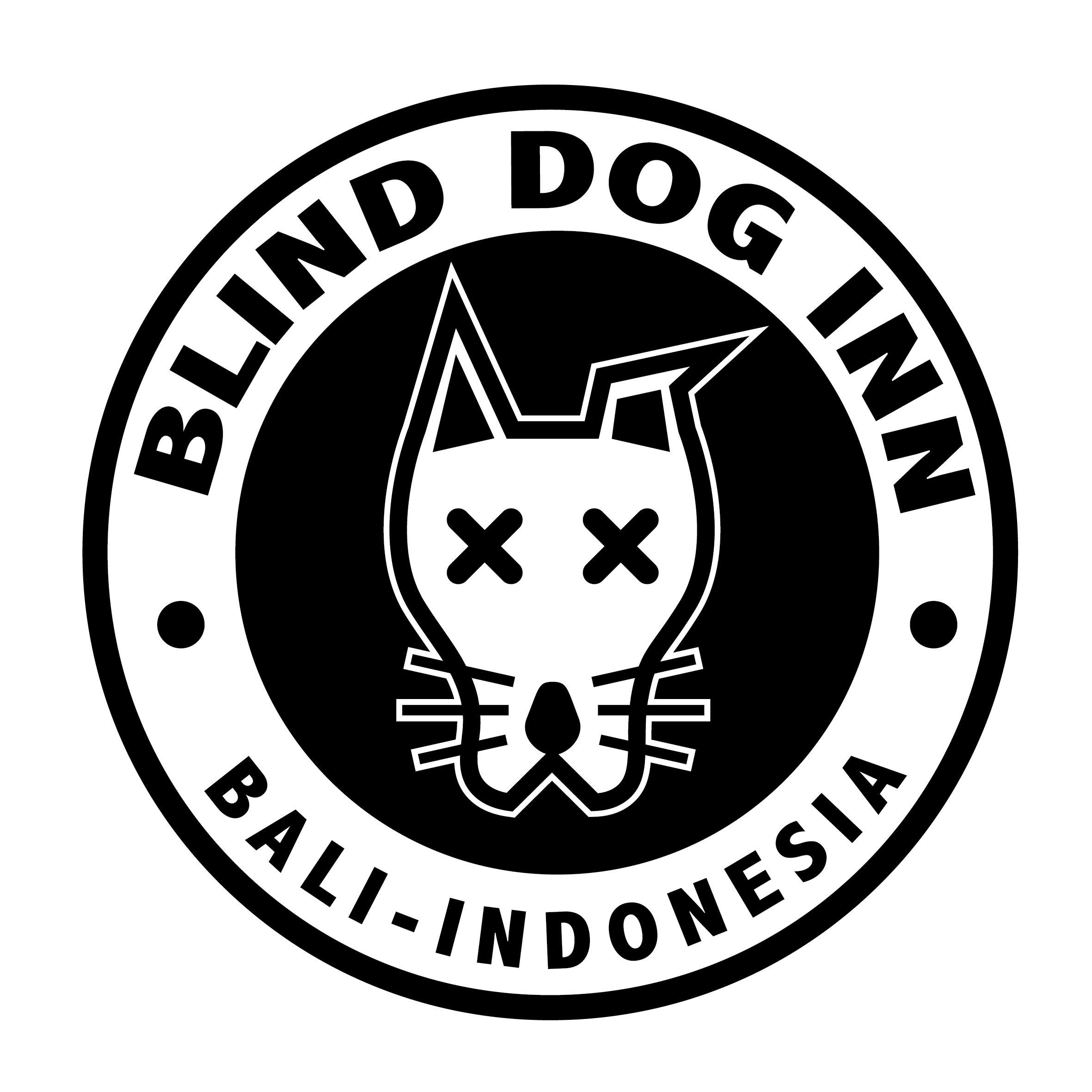 Blind Dog Inn - Surf Camp for All Levels!